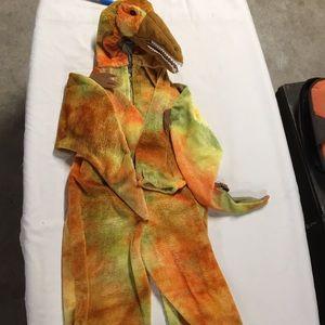 Other - Dinosaur costume